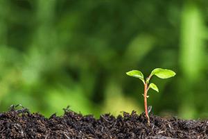 Forum Solutions plastiques: ÉEQ et Citeo réunissent toute la chaîne de valeur pour développer le recyclage du plastique